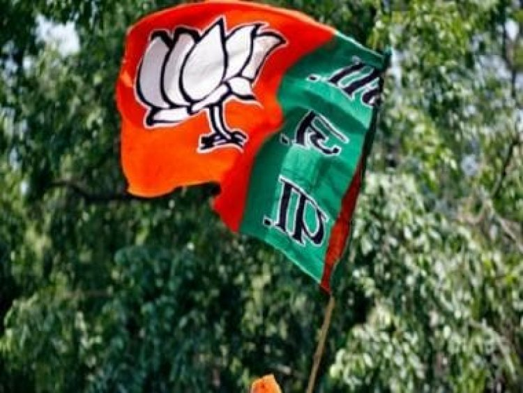 UP Legislative Council polls: Ten BJP, two SP candidates set to get elected unopposed to Upper House