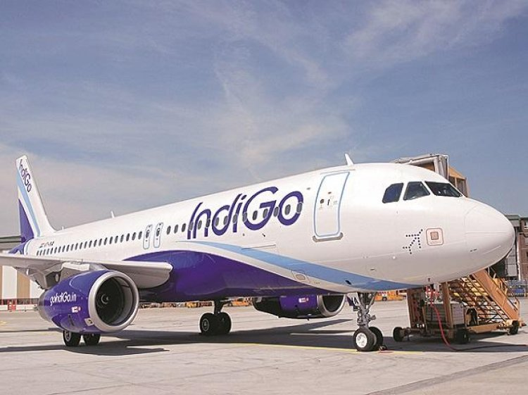 IndiGo tightens grip in India and targets growth abroad amid pandemic