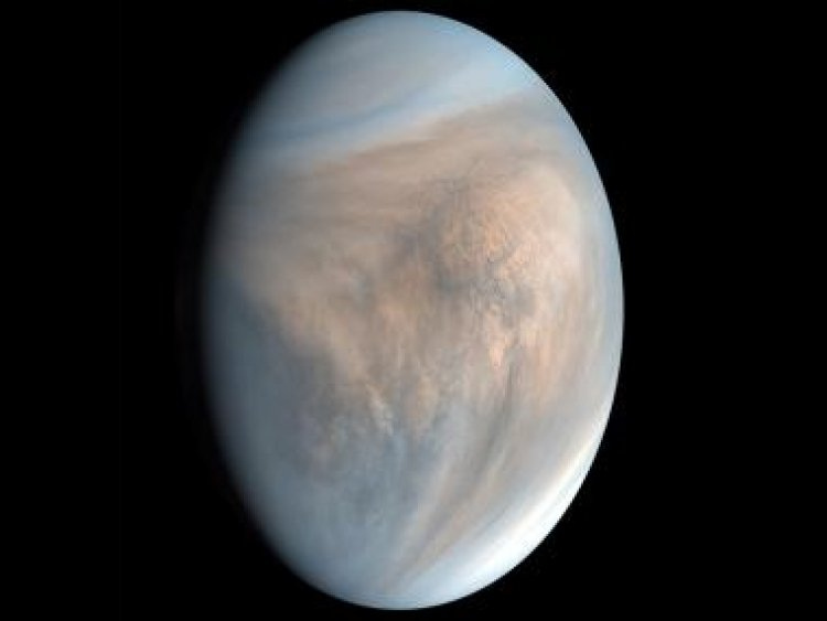 Clouds of uncertainty: Scientists claim to have spotted signs of life on Venus but sceptics prevail