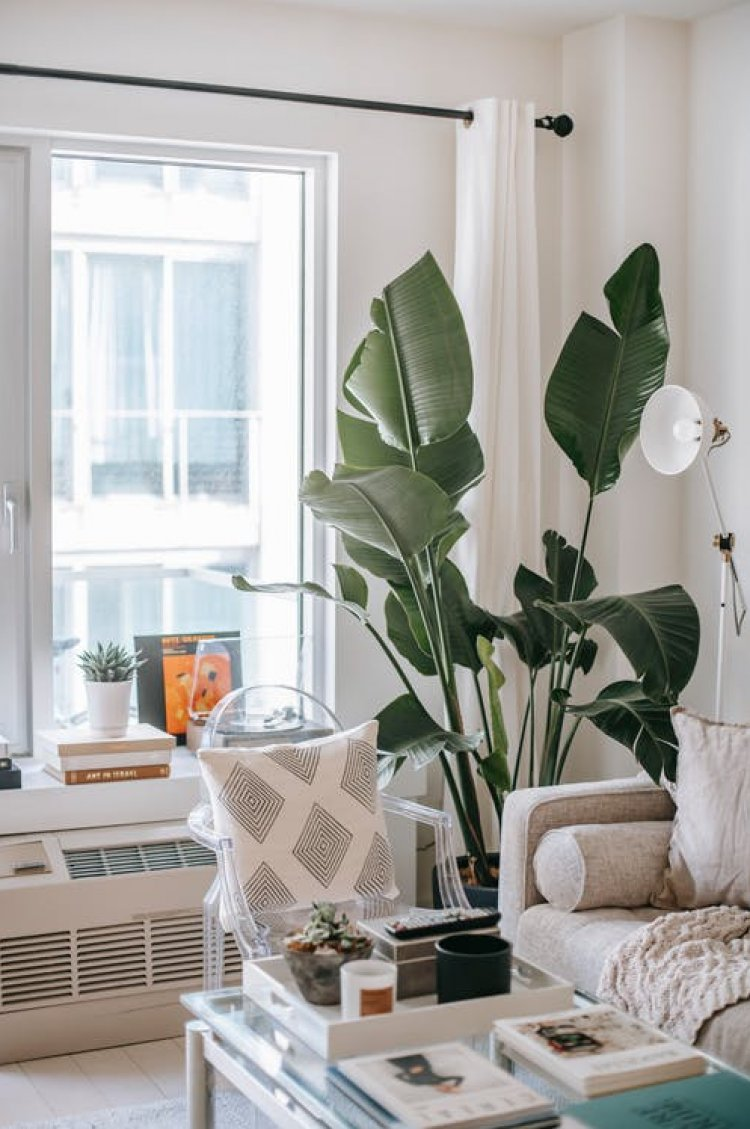 5 Home Styling Trends to Covet in 2021