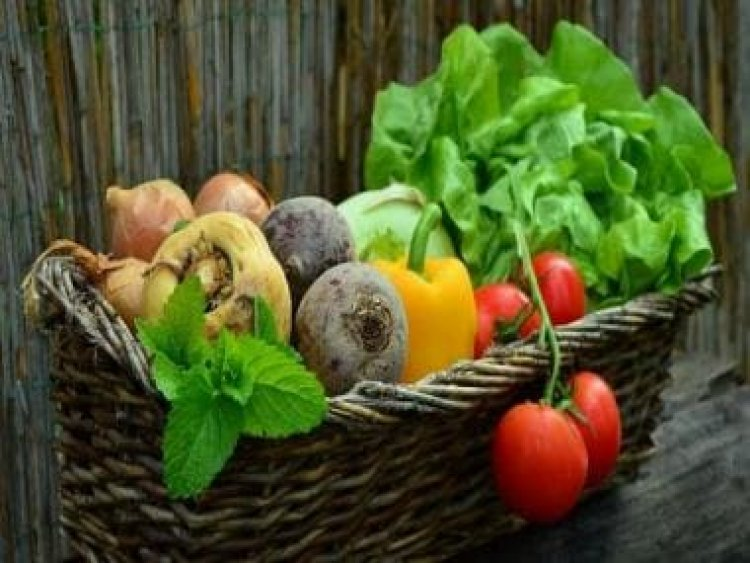 World Vegetarian Day 2021: From history, significance to famous quotes, all you need to know